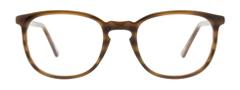 Brillen mit Fassung aus Büffelhorn in Leipzig kaufen
